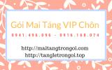 Dịch Vụ Mai Táng VIP Chôn Cất