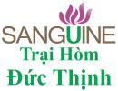 Sanguine – Cuộc Sống Đạt Quan