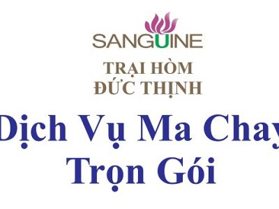 Dịch Vụ Ma Chay