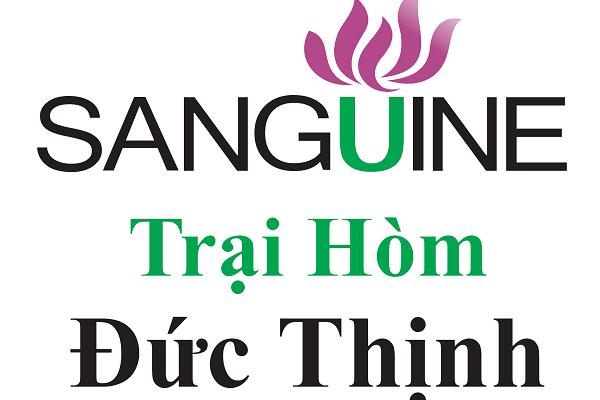 Dịch Vụ Mai Táng Trọn Gói Hàng Đầu Tốt Nhất TPHCM